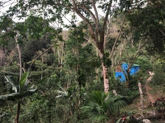 Villa Verde in Minca